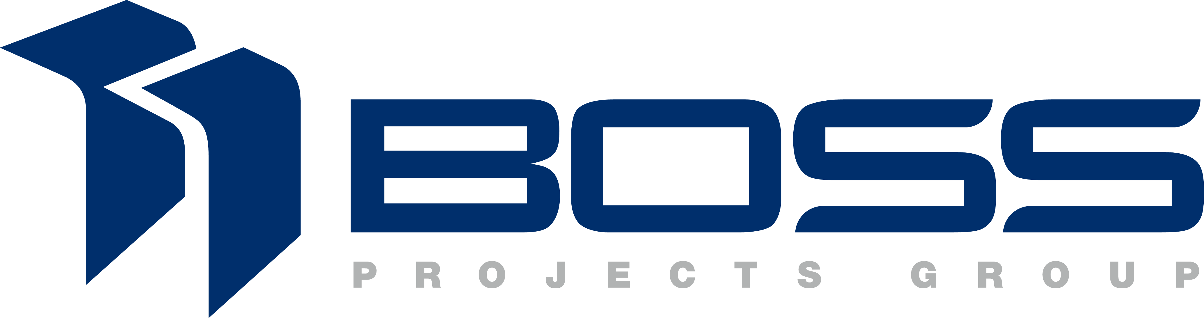 Boss Projects Group